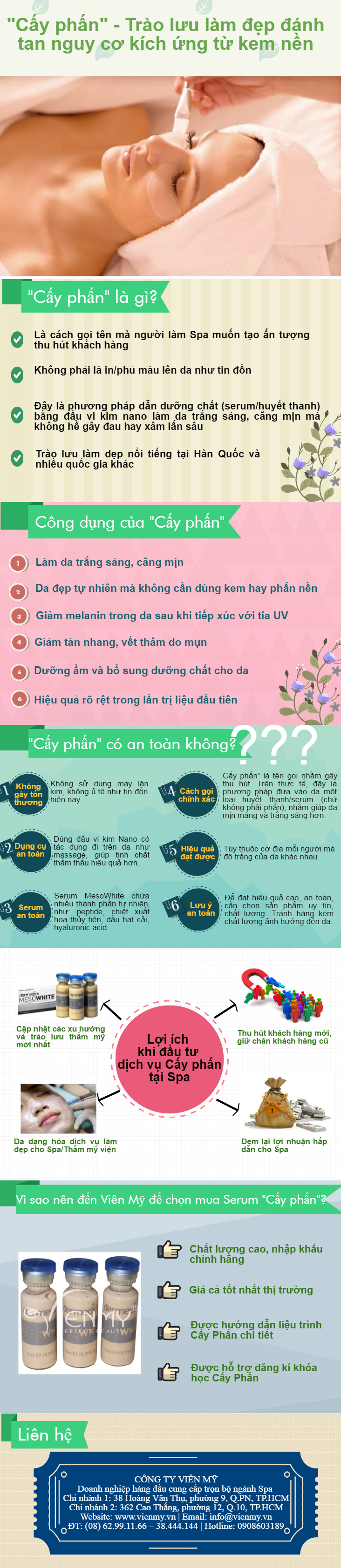 infographic-cay-phan